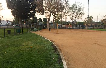 la palma dog park for web