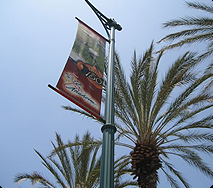 View up at a banner on a light pole with palm trees