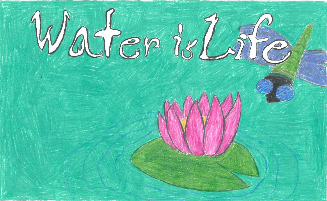 Poster drawing of water lily and dragon fly