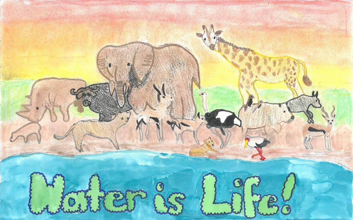 Poster drawing of African animals drinking from watering hole