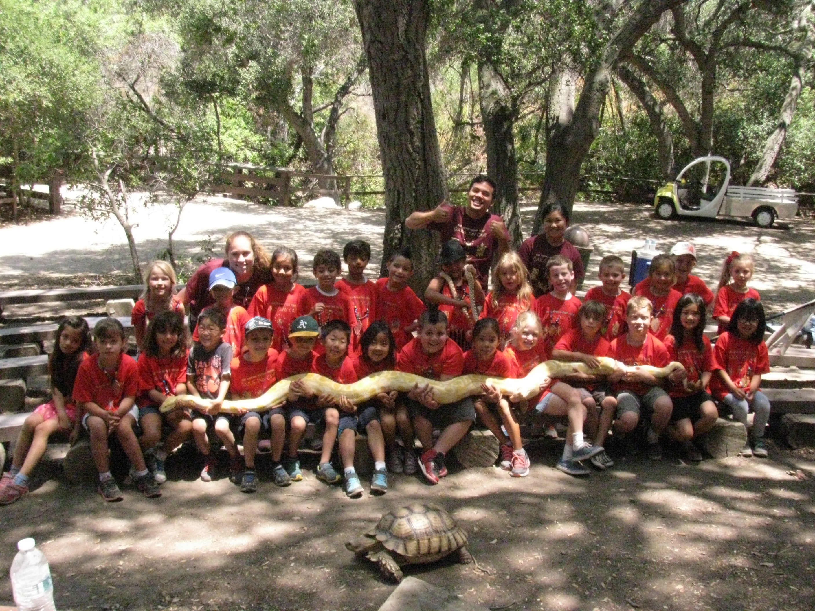 Kids holding long snake in front of a turtle