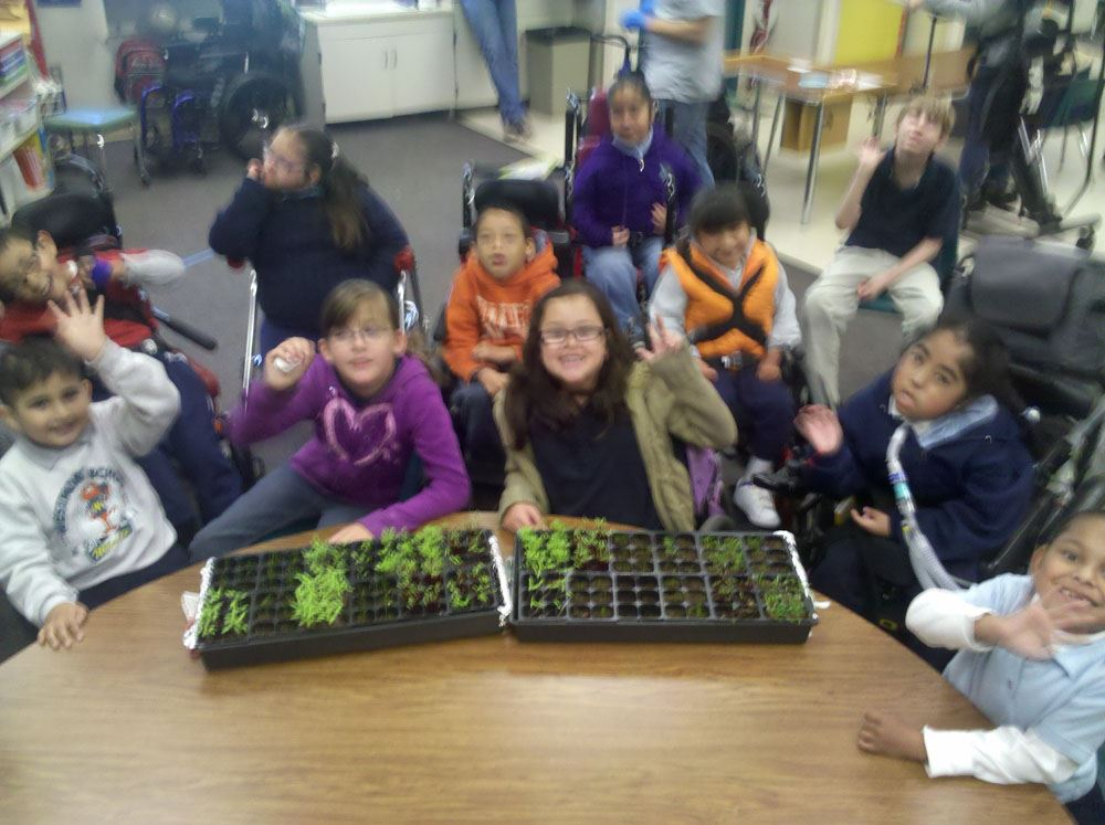 Group photo of the class and their seedling trays sitting on a table in front of them